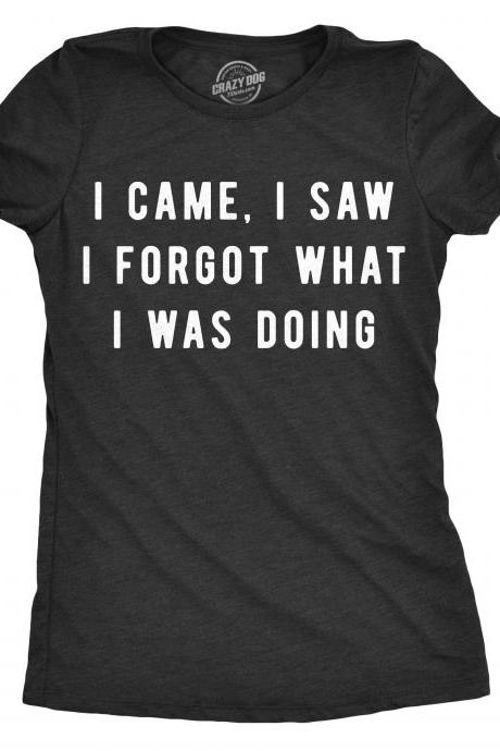 Amnesia Shirt, Sarcastic Shirts Women, Shirts With Funny Sayings, Funny Womens Shirt, Offensive Shirt for Women, I Came I Saw I Forgot