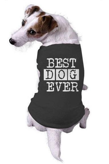 Best Dog Ever Dog T Shirt, Clothes For Dog, Cute Dog Clothes, Funny Dog T Shirt, Dog Fancy Dress, Dog Apparel, Novelty Dog Shirt